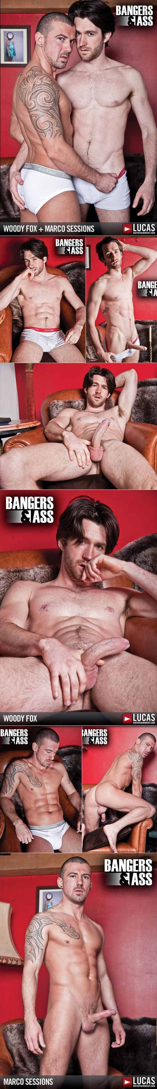 Woody-fox-marco-sessions-lucasent-1
